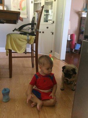 Naaman and Rocky the pug